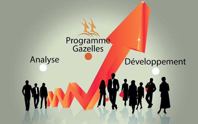 Aides aux PME et TPE